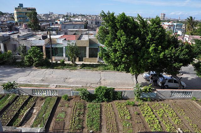 """""""Municipio 10 de Octubre - La Havane"""" por DominiqueMichel - Obra do próprio. Licenciado sob CC BY-SA 3.0 via Wikimedia Commons."""