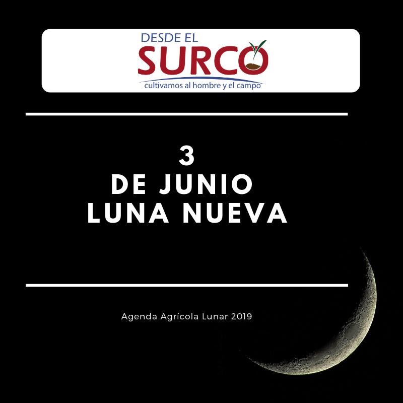 Copy of Copy of Copy of 21 de ENERO Nuestra Primera luna llena del Año (6)