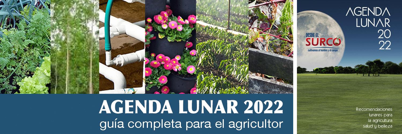 Agenda Lunar 2022